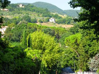 Il Parco - car NOT necessary. Central Spoleto. - Spoleto vacation rentals