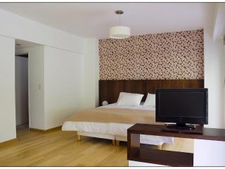 Ultra luxury Studios ApartmentsChe Soho - Buenos Aires vacation rentals