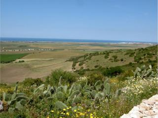 The view from the garden to The Atlantic ocean and the unspoilt countryside - priceless and peaceful - A quiet location with fantastic  views, near beach - Vejer - rentals