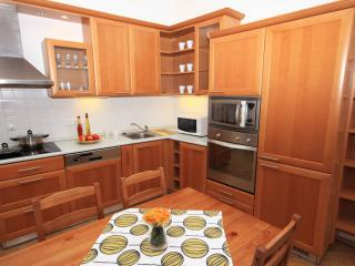 ApartmentsApart Prague Central 3 - 1B - Prague vacation rentals