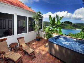 Windwardside Main House: views, spa. elegant & quiet - Coral Bay vacation rentals