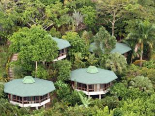 Jungle Bungalows Surrounded by Nature & Oceanview - Manuel Antonio National Park vacation rentals