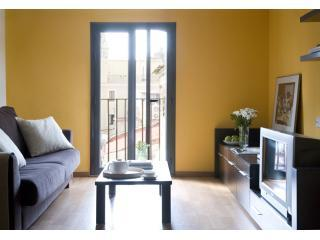 Salon, nice views from the balcony outside. - Amazing apartment in the GOTHIC area of Barcelona - Barcelona - rentals