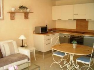 Palais Moliere Cannes 1 Bedroom Flat in Excellent Area - Cote d'Azur- French Riviera vacation rentals