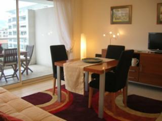 Reine Eden- Beautiful 1 Bedroom with Terrace,  Just off Croisette - Image 1 - Cannes - rentals