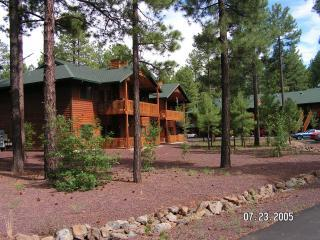 Summer fun in Pinetop - 100% Satisfaction Guarantee!...Livin in the Pines! - Pinetop - rentals
