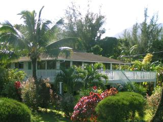 Hanalei Home with Great Views, Location & Privacy - Hanalei vacation rentals