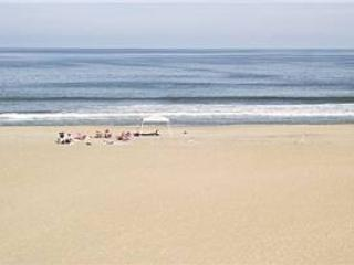 A-208 Seaside Grandeur - Image 1 - Virginia Beach - rentals