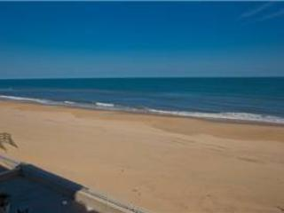 A-207 Endless Summer - Image 1 - Virginia Beach - rentals