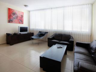 Luxury 2br apartment Prime location hayarkon St. - Tel Aviv vacation rentals