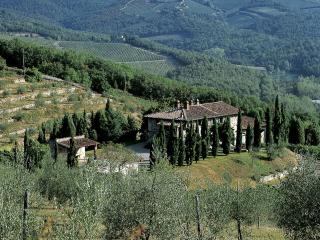 Campassole | Villas in Italy, Venice, Rome, Florence and Paris - Florence vacation rentals