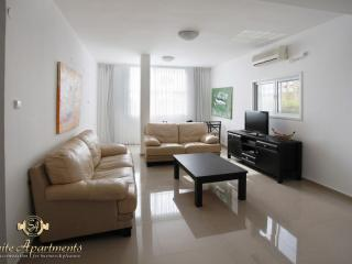 Hayarkon Luxury & Modern 2br Suite - Tel Aviv vacation rentals