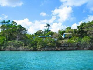The property from the sea - An eclectic 1-bed cottage on the sea in Ocho Rios - Ocho Rios - rentals