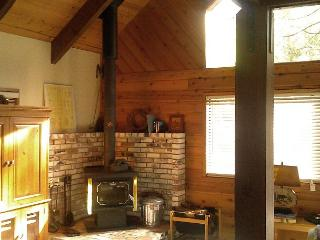 Charming, affordable mountain cabin located in the forested Blue Lake Springs - Arnold vacation rentals