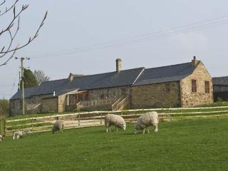 THE DAIRY , pet friendly, country holiday cottage, with hot tub in Milton, Ref 4585 - Alston vacation rentals