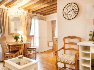 MAY DEAL Bright and Quiet Bastille Apt, Free WiFi - Paris vacation rentals