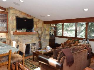 Fasching Haus Unit 5 - Aspen vacation rentals
