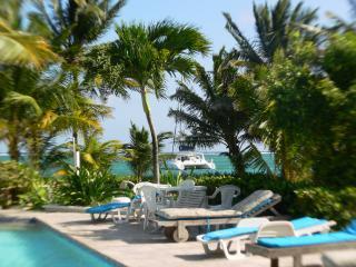 Paradise Villas Beachfront Condos - San Pedro vacation rentals