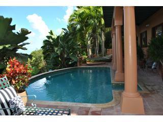 Pool patio - Villa Della Palme - Tortola - rentals