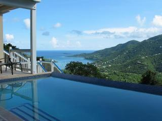 View from the swimming pool. - Blue Palm Villa - 3 bed/3 bath, views, pool. - Coral Bay - rentals