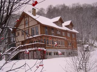 Shinrin Lodge - Hokkaido vacation rentals