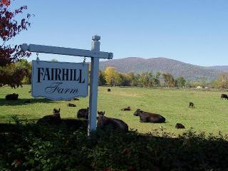 Fairhill Farm Vacation Rental;mountain views; pool - Stanardsville vacation rentals