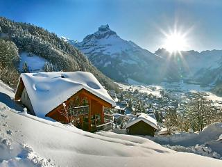 ALPHAVEN 4 Luxury Apartments Stunning Views Sauna - Engelberg vacation rentals