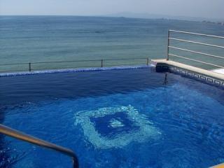 Rooftop Infinity Pool - Beach Condos Nadia  Beachfront Ocean View / WiFi - Puerto Vallarta - rentals