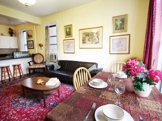 Huge 4 bedroom  mins to Time Sq!(Minumum 30 night) - New York City vacation rentals