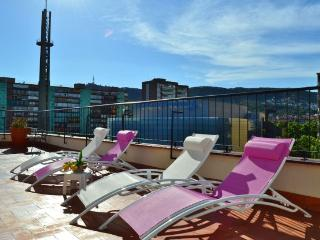 Ferran Batik, amazing 3 BR penthouse in Pedralbes - Cervello vacation rentals