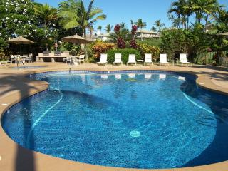 Beautiful Modern Wailea! Remodeled & Affordable - Wailea-Makena vacation rentals
