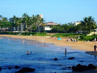 Kihei Akahi D112 1/1 Across from Kamaole Beach 2 - Kihei vacation rentals
