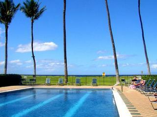 Waiohuli Beach Hale #B-107 is a 1 Bd  that sleeps 4. $85 SUMMER SPECIAL! - Kihei vacation rentals
