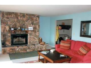 Living Room - HARBOR CONDOMINIUMS #29 - Lake Placid - rentals