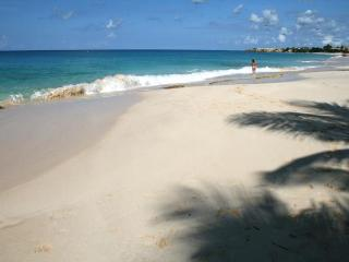 Seaside, open-plan villa with professional kitchen. ALZ ALZ - Anguilla vacation rentals