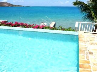 Quiet, casual, secluded Caribbean villa nestled on its own snorkeling beach. VG SER - Virgin Gorda vacation rentals