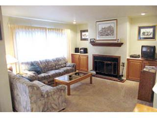 Living Room - WOODKNOLL 1 - Lake Placid - rentals