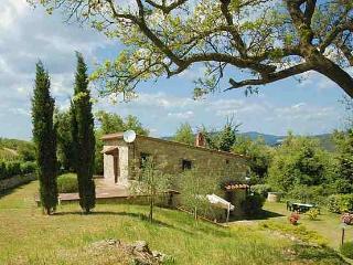 Villa Rental in Tuscany, Lecchi - Chiantigiana Minore - Gaiole in Chianti vacation rentals