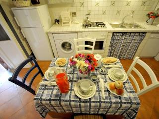 Apartment Rental in Rome City, Historic Center - Palatina - Labico vacation rentals