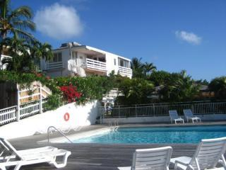 Very bright and comfortable one bedroom apartment - Saint Jean vacation rentals