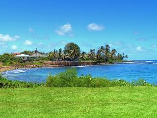 Actual view from the lanai. This really is how close the property is to the ocean. - Kuhio Shores Oceanfront Condo #103 - Koloa - rentals