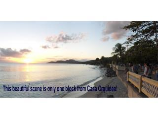 Casa Orquidea one block from Caribbean in Vieques - Isla de Vieques vacation rentals