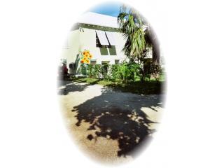Driveway & Entrance - Sunflower Studios, Pembroke - 5 mins from Hamilton - Hamilton - rentals