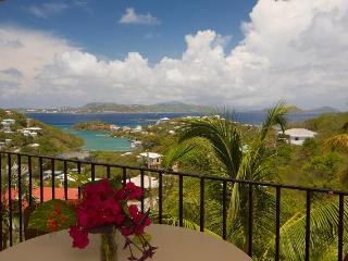 Serendip Vacation Condos - Cruz Bay vacation rentals
