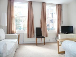 Living room - Central London S/C Apartment (Flat 2)ref 186203 - London - rentals
