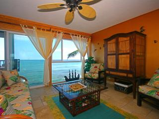 Absolute Oceanfront  Kona Condo- Banyan Tree 302 - Kailua-Kona vacation rentals