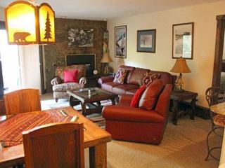 Westwind 108 2BD 2BA condo - Vail vacation rentals