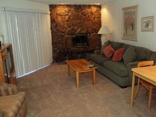 Westwind 109 1BD 1.5BA condo - Vail vacation rentals