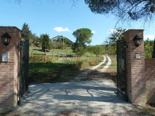 San Miniato - Tuscany: Apartments in restored farm - San Miniato vacation rentals