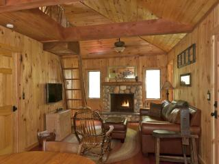 Romantic Adirondack Getaway-Lake Rights,2 Kayaks! - Wells vacation rentals